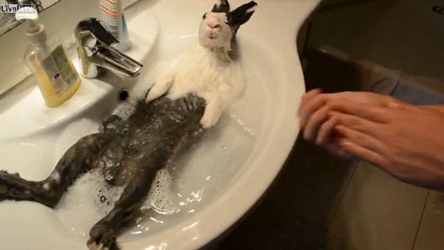 Relajante y tranquilo baño