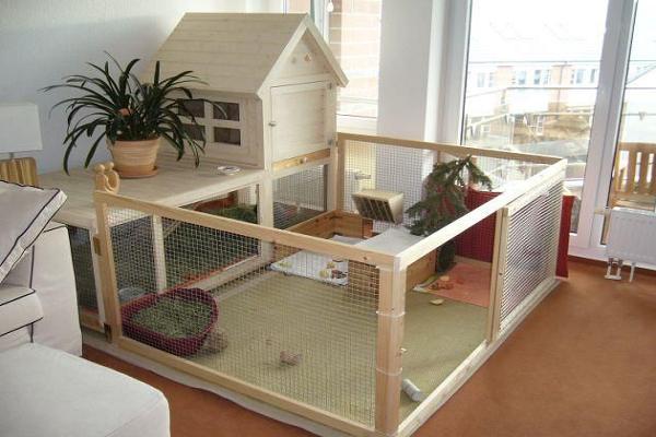 Jaulas de madera ideal para tu conejo