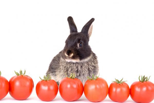 Conejito con tomates