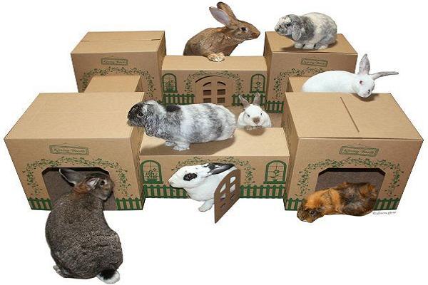 Como hacer con material e provecho una casa de conejos cómoda