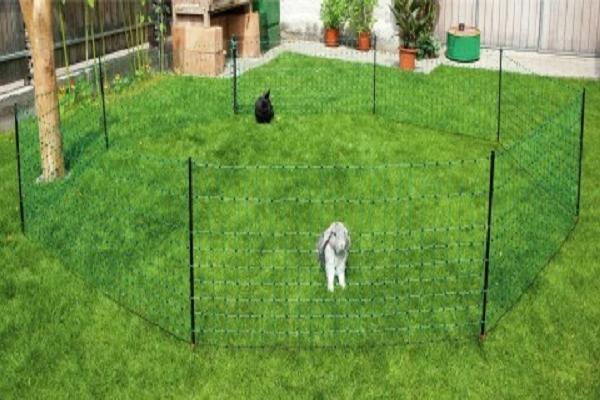 Porque ussar cerca para conejos