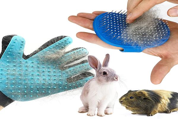 Accesorios de aseo para conejos