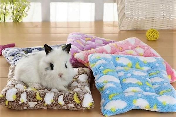 Camas para conejos