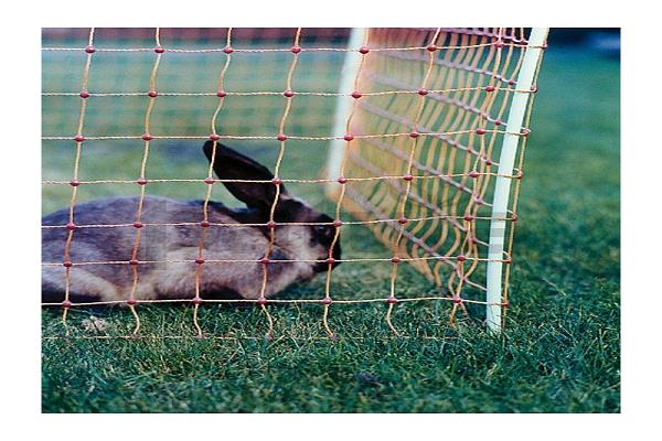 Material de la cerca para conejos