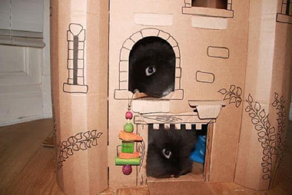Como hacer una casa de conejo