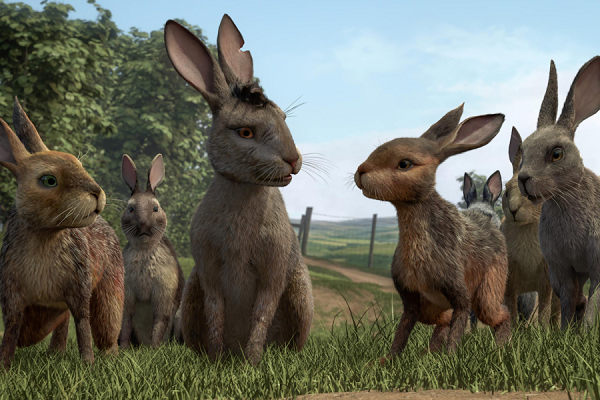 Las mejores películas de conejos