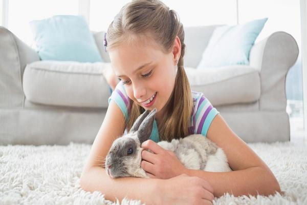 ¿Cuáles son los síntomas de un conejo enfermo