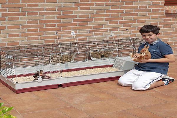 Como limpiar la jaula de un conejo