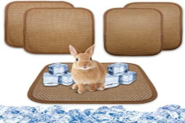 Mantener conejos frescos en climas cálidos