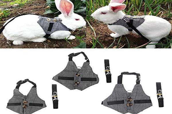 Mejor arnés para conejos