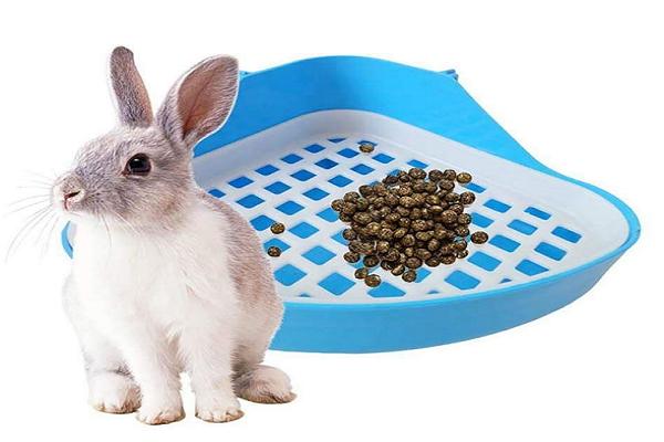 Mejores esquineras para conejos