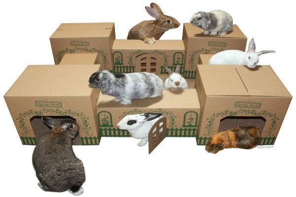 Hacer una casa de conejo con cartón